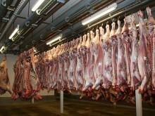 viande-carcasse-abattoir